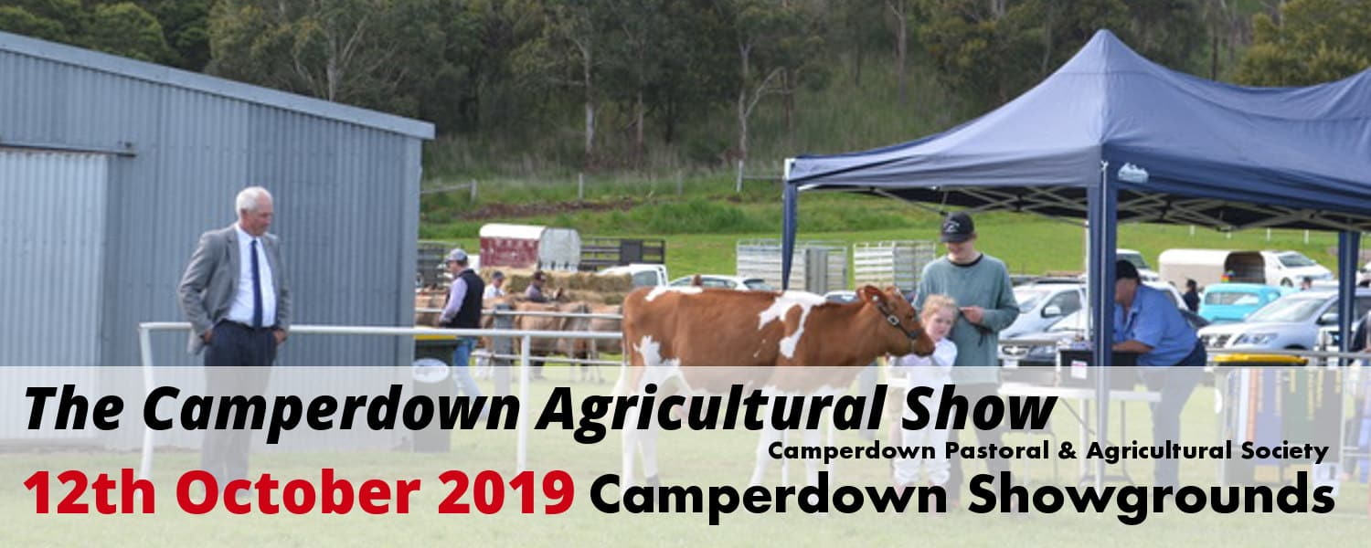 1500by600-camperdown-show-6